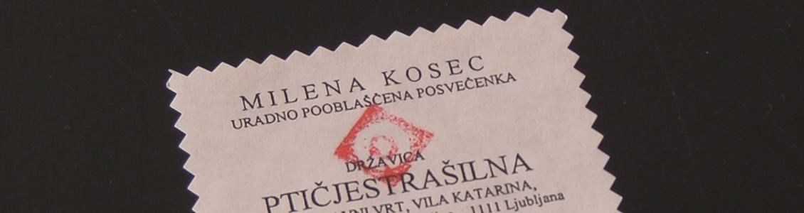 Video večer s Postajo DIVA: Milena Kosec